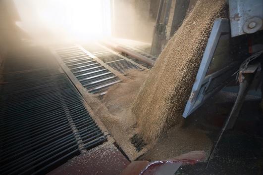 Пыление при выгрузке зерна